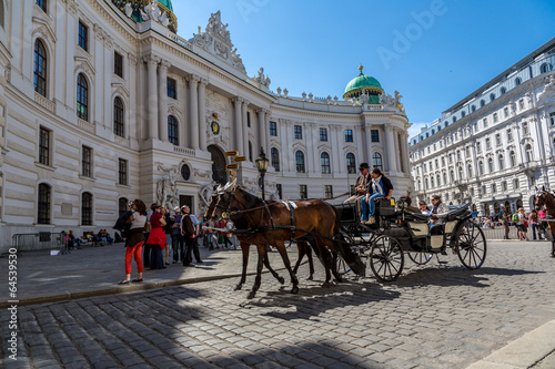 Tuinposter Wenen Horse-drawn Carriage in Vienna at the famous Stephansdom Cathedr