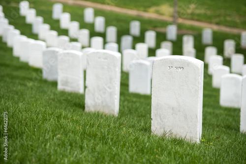 Photo sur Toile Cimetiere arlington cemetery graveyard