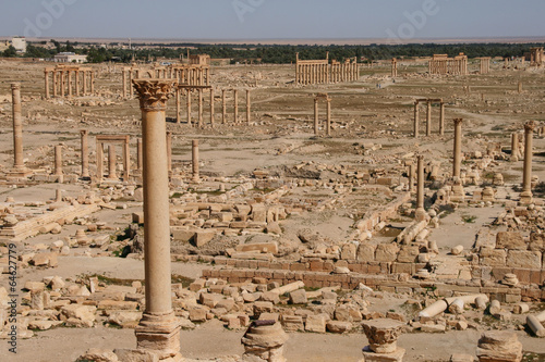 ruins of palmyra Canvas Print