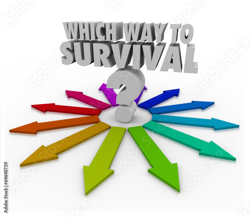 Which Way to Survival Quesion Arrows Pointing Way Wallpaper Mural