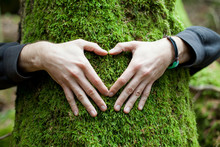 Heart Hand On Tree With Moss, ...