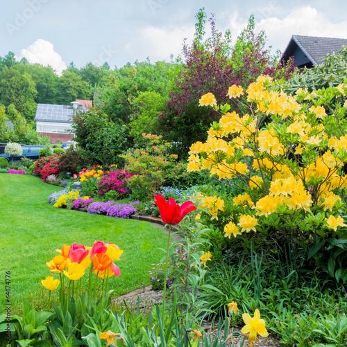 Plakat Ogród z azalią, tulipanami i flokowanym floksem