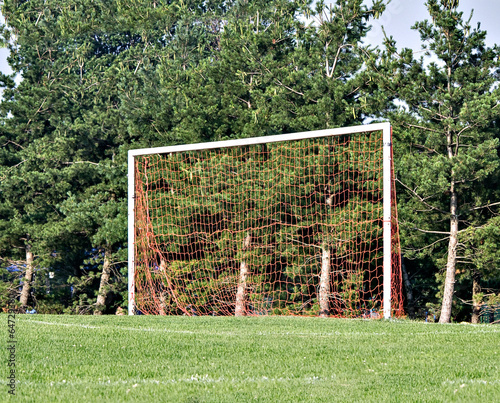 Goal post Canvas Print