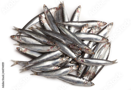Photo anchovies