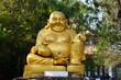 Kasennen Happy Buddha or Laughing Buddha