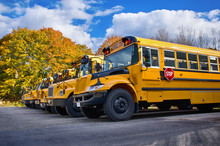 Row Of Yellow School Buses On A Sunny Autumn Day