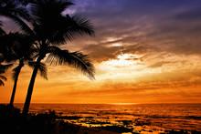 Hawaiian Sunset With Tropical ...