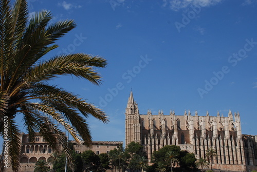 Palm tree Cathedral in Palma de Mallorca, Spain