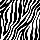 Fototapeta Zebra - Zebra Stripes Seamless Pattern