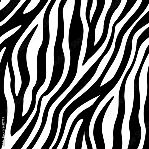 Zebra Stripes Seamless Pattern - 64812778