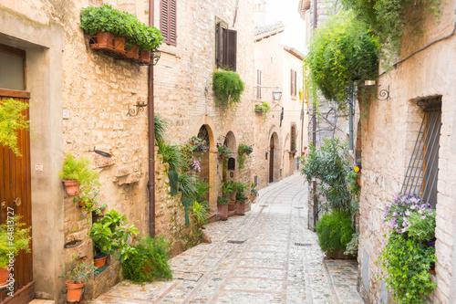 Fototapety, obrazy: Vicolo storico con fiori