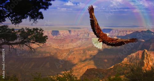 In de dag Eagle Eagle takes flight over Grand Canyon USA