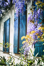 Old Windows With Blue Shutters