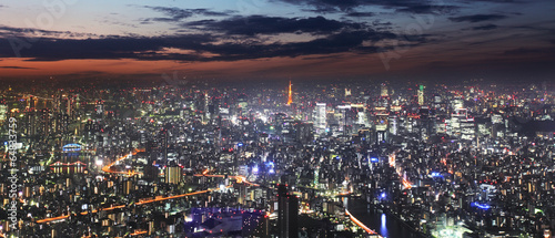 Foto op Canvas Tokyo Tokyo skyline panorama at night from Tokyo Tower, Japan