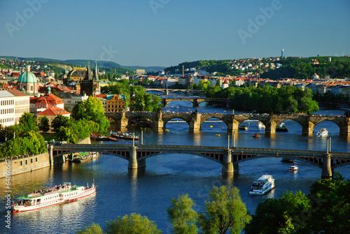 Wall Murals Prague View of Charles Bridge in Prague from Letensky gardens.