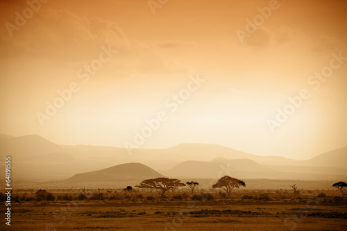 In de dag Afrika african savannah at sunrise