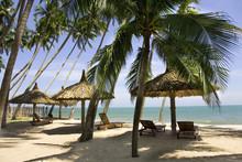 Sun Loungeres And  Umbrellas A...