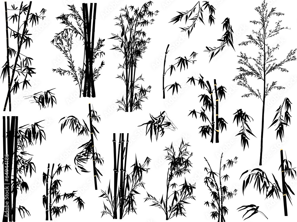 isolated black bamboo plant silhouettes collection