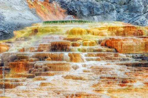 Obraz na plátně  Yellowstone