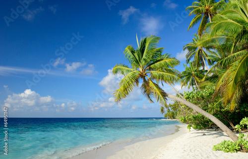 Foto-Kissen - Strand mit Palmen