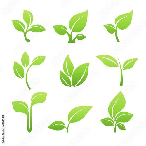 Valokuva  Green sprout symbol vector icon set