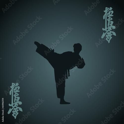 Obraz na plátně  Karate