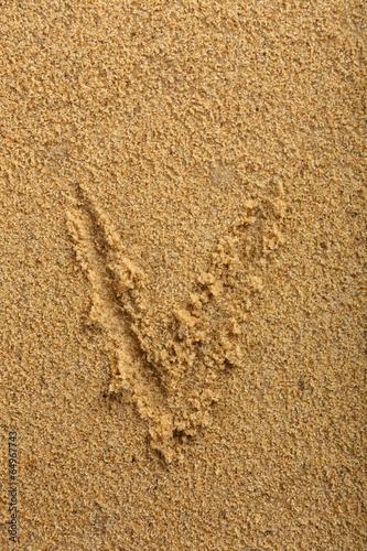 Deurstickers Droogte Alphabet letter written on wet beach sand