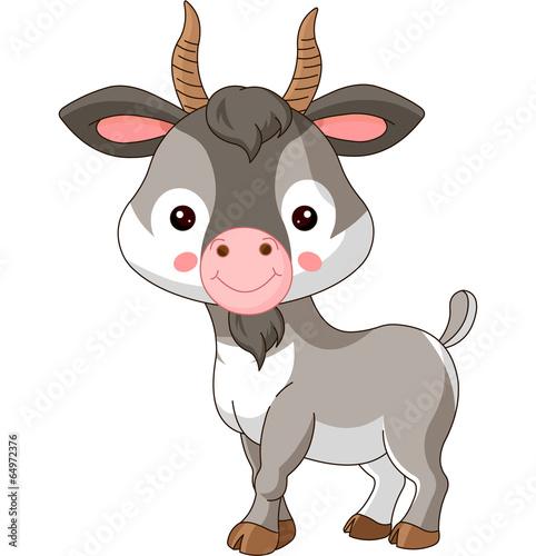 fototapeta na drzwi i meble Zwierzęta gospodarskie. Koza