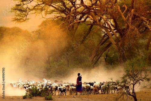 Shepherd leading herd of goats