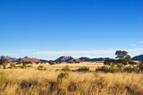 Fototapeta Sawanna - African savanna landscape, Namibia, South Africa