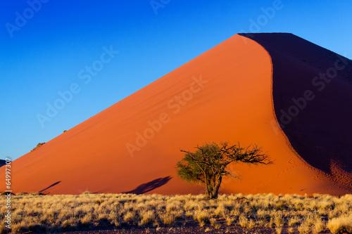 Fotografie, Obraz  Sunset dunes of Namib desert, Sossusvlei, Namibia, Africa