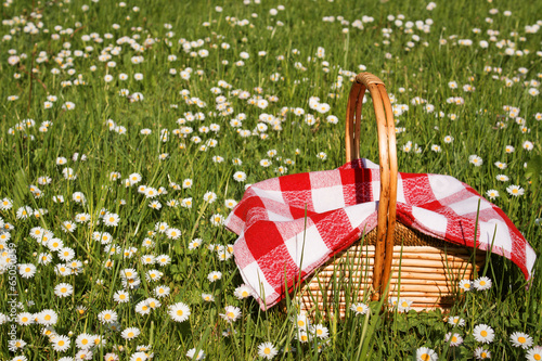 Photo Stands Picnic picnic basket