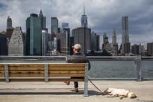 Mann Mit Hund Vor Der Skyline Manhattan New York