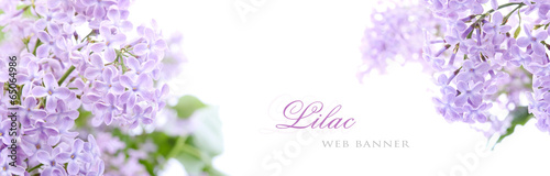 Obraz Lilac flowers - fototapety do salonu
