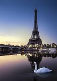 Fototapeta Fototapety z wieżą Eiffla - Tour Eiffel au Crépuscule avec Cygne Blanc