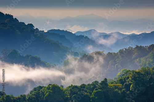 Canvas Prints Hill Morning Mist at Tropical Mountain Range