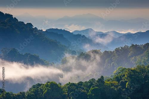 Foto op Aluminium Nachtblauw Morning Mist at Tropical Mountain Range