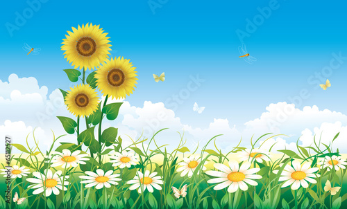 Foto op Aluminium Blauw Summer meadow with daisies and sunflowers