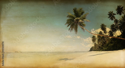 Photo  Rustic Textured Parchment of the Beach and Palm Trees