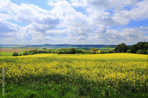 Poster Melon Spring Landscape in Bohemian Paradise, Czech Republic