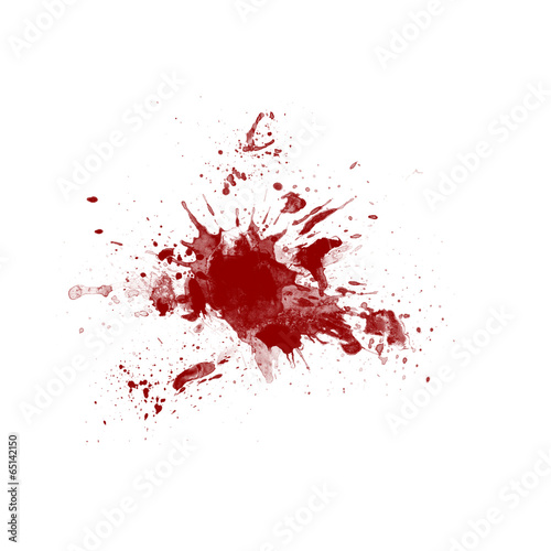 Fotografia, Obraz  Blood splatter on white background
