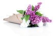 Beautiful bouquet of lilac flowers isolated on white