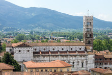 View Of Cathedral Of Lucca