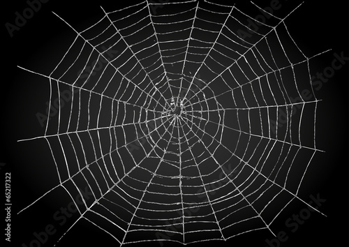 Cuadros en Lienzo Illustration of spiderweb