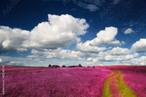 Fotobehang Crimson Magic Landscape – Pink Field and Sky with Real Stars