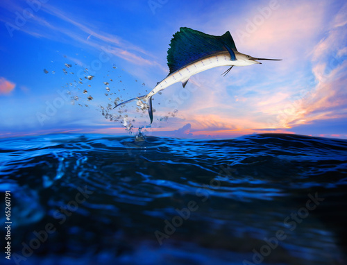 Photo  sailfish flying over blue sea ocean