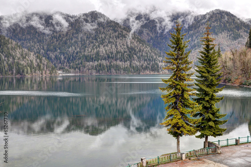 two trees on the background of a mountain lake Wallpaper Mural