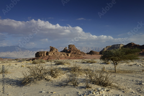 Garden Poster Natural Park Geological formations and desert valley of Timna park, Israel