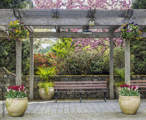 Fotografia  Rustic pergola with bench and flower pots