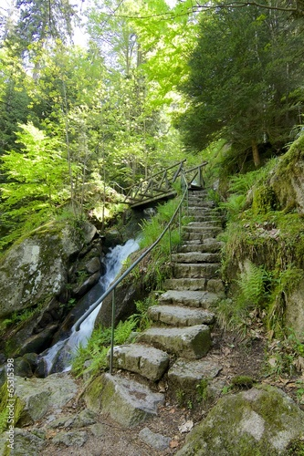 schody-z-czarnego-lasu